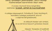 Falunapi játékok és főzőverseny