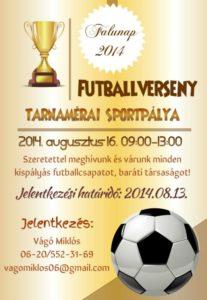 Falunap 2014.